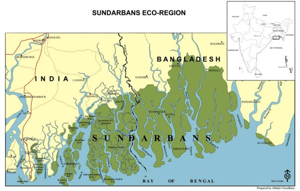 Climate Activists are trying to stop remote Indian villiages in the Sundarbans regions from having grid based electricty, envioronmentalists says the village can omly have intermittent renewable enegy.