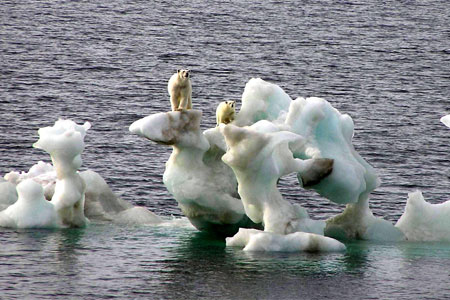 Time to photoshop some polar bears on to melting ice for another new scary Arctic fear meme.